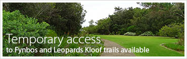 Temporary access to Fynbos and Leopards Kloof trails at Harold Porter